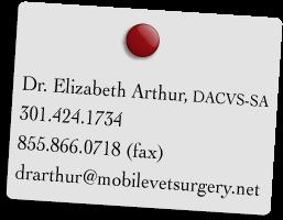 contact dr arthur